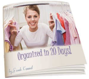 New Ebook – How to Get Organized in 20 Days!