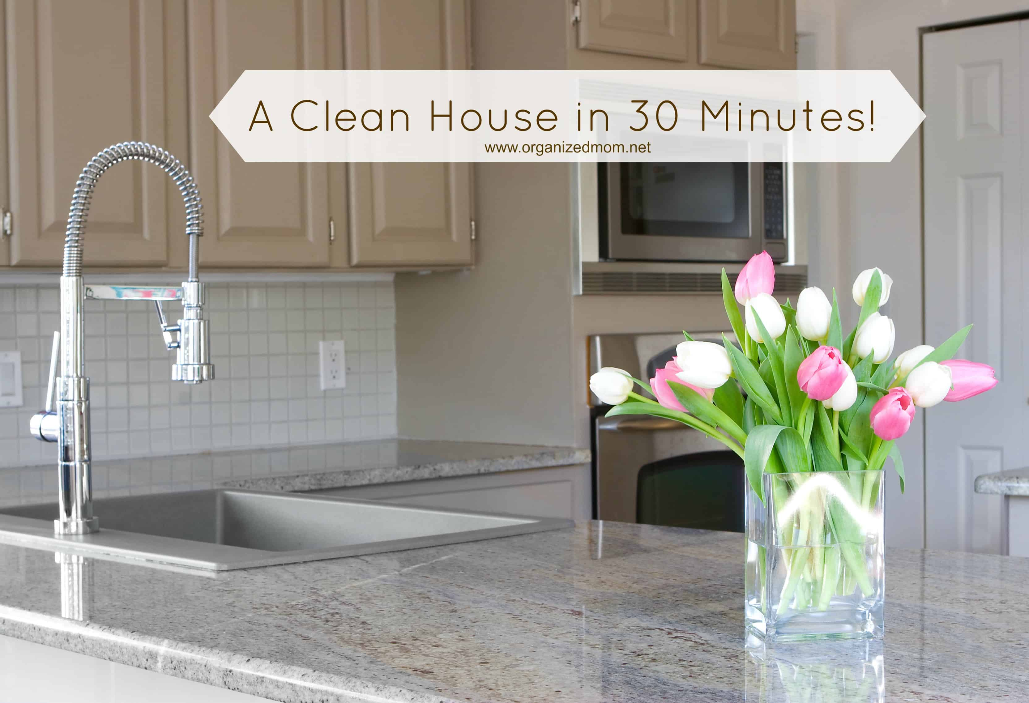 clean your house quickly archives - the organized mom