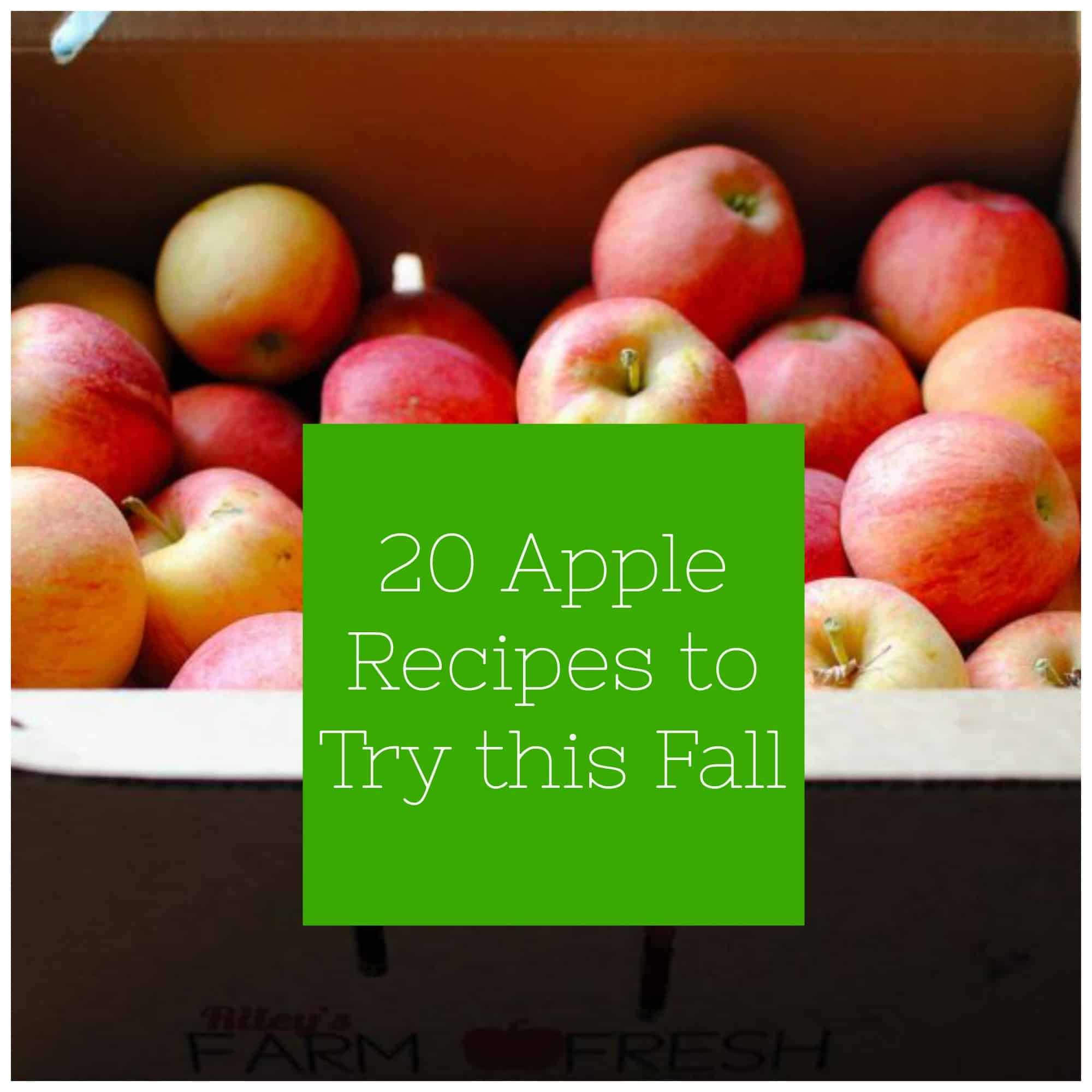 20 Apple Recipes To Try This Fall