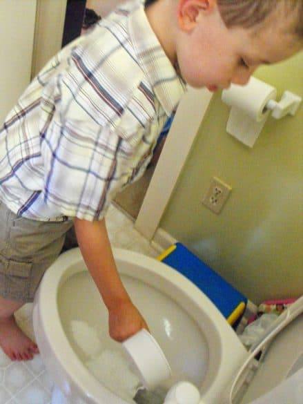 bathroom chores for toddlers