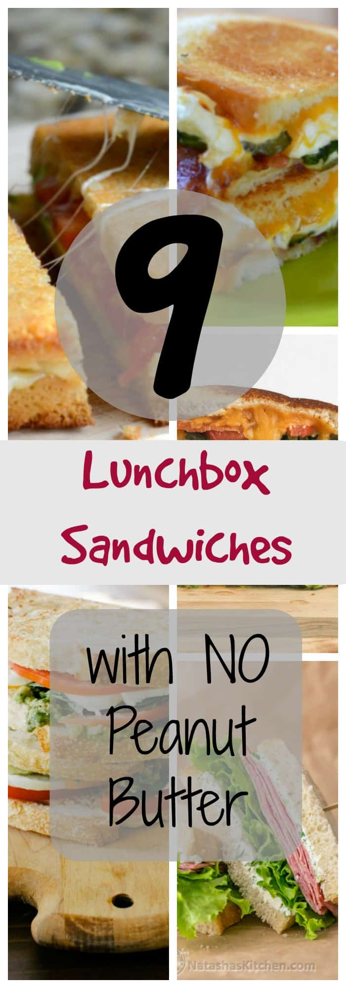 9 Lunch box sandwiches that don't include peanut butter!