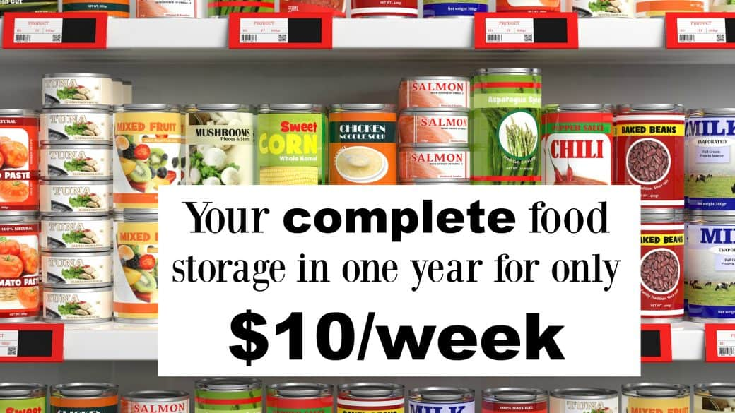 food storage in 1 year with a printable checklist