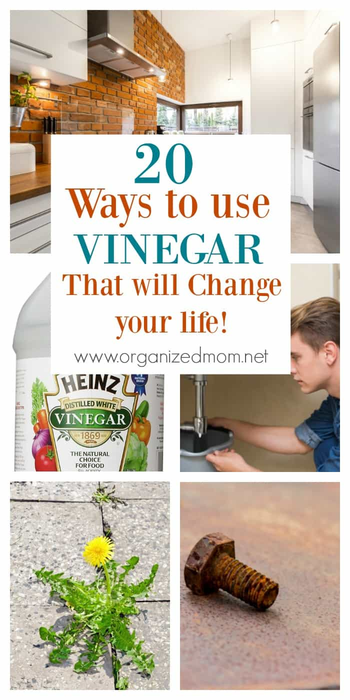 20 Ways to use vinegar that will change your life