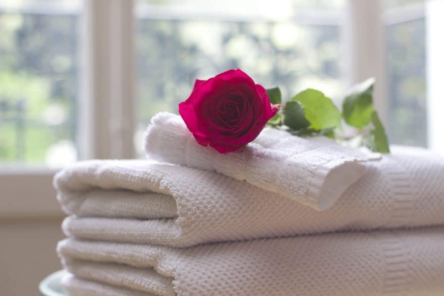 towels, rose, toiletries