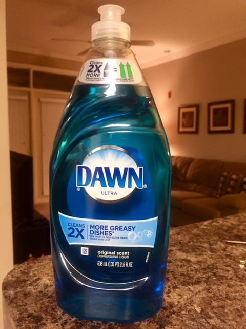 A bottle of Dawn dish soap