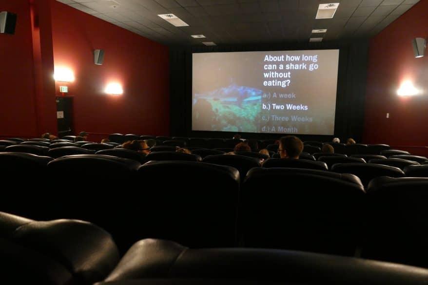 4d movie