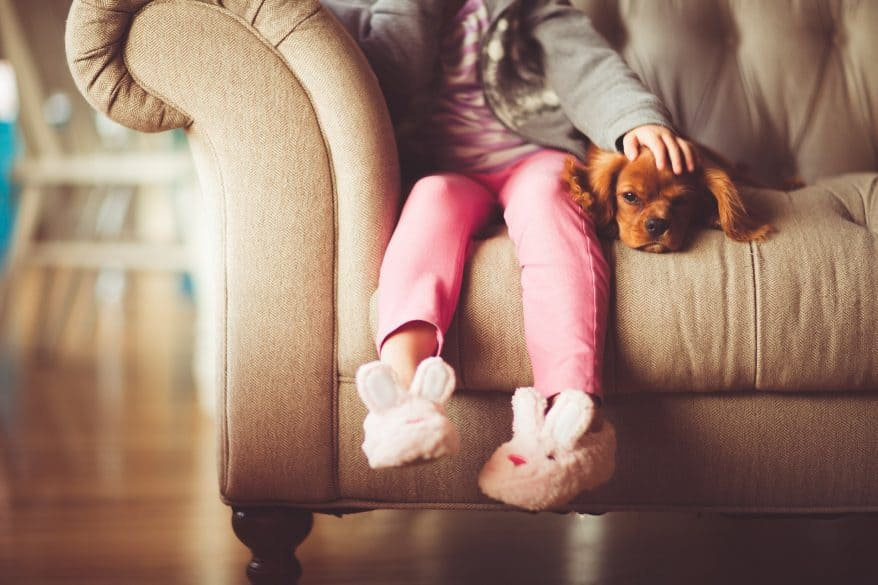 kids pets