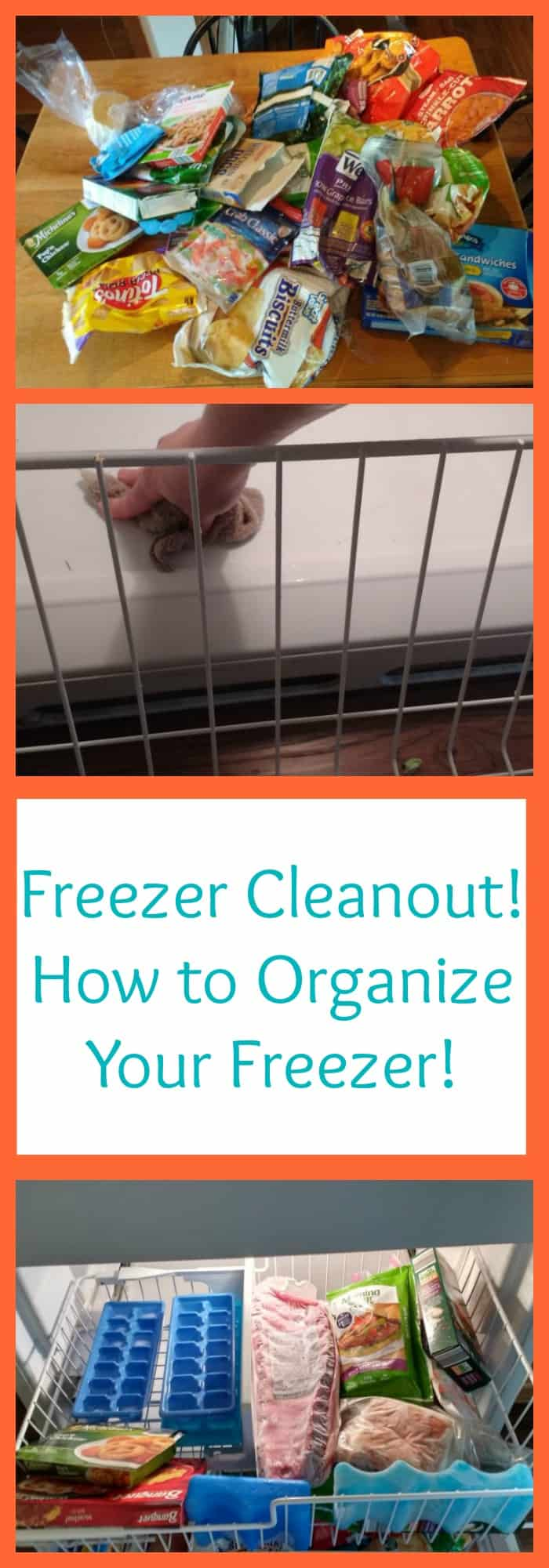 Freezer Cleanout--How to Organize Your Freezer