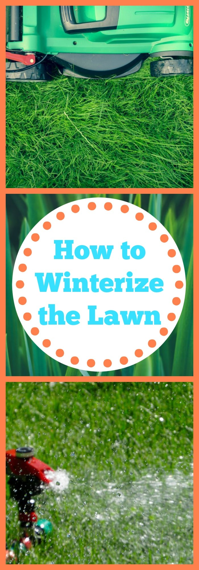 How to Winterize the Lawn