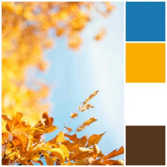 Blue, Mustard, White, Brown