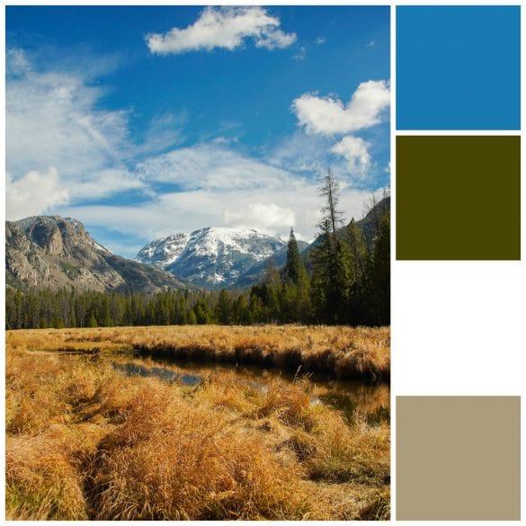 Blue, Olive, White, Khaki