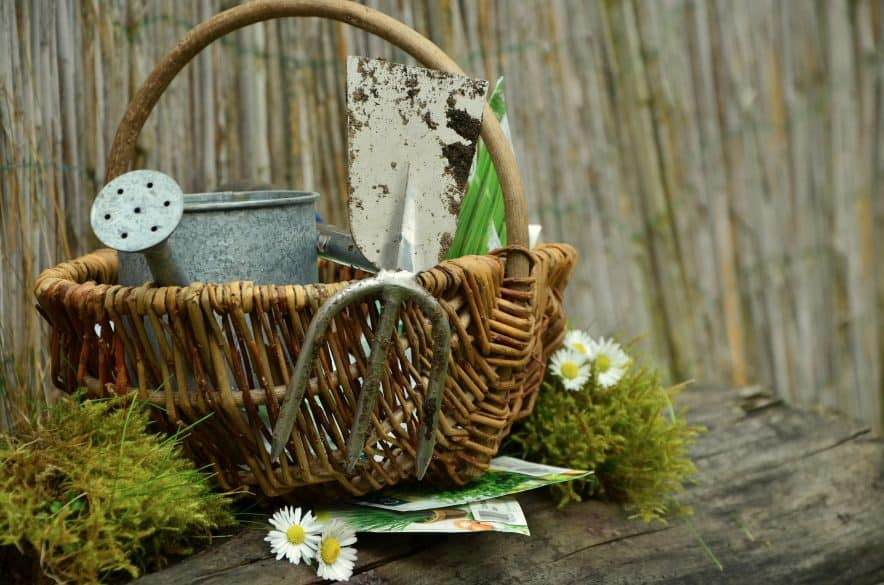 easter basket gardening