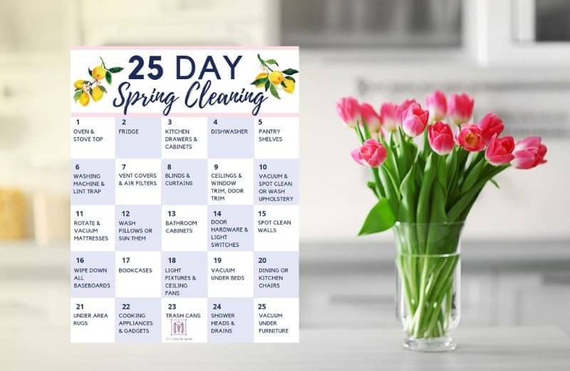 spring cleaning printables
