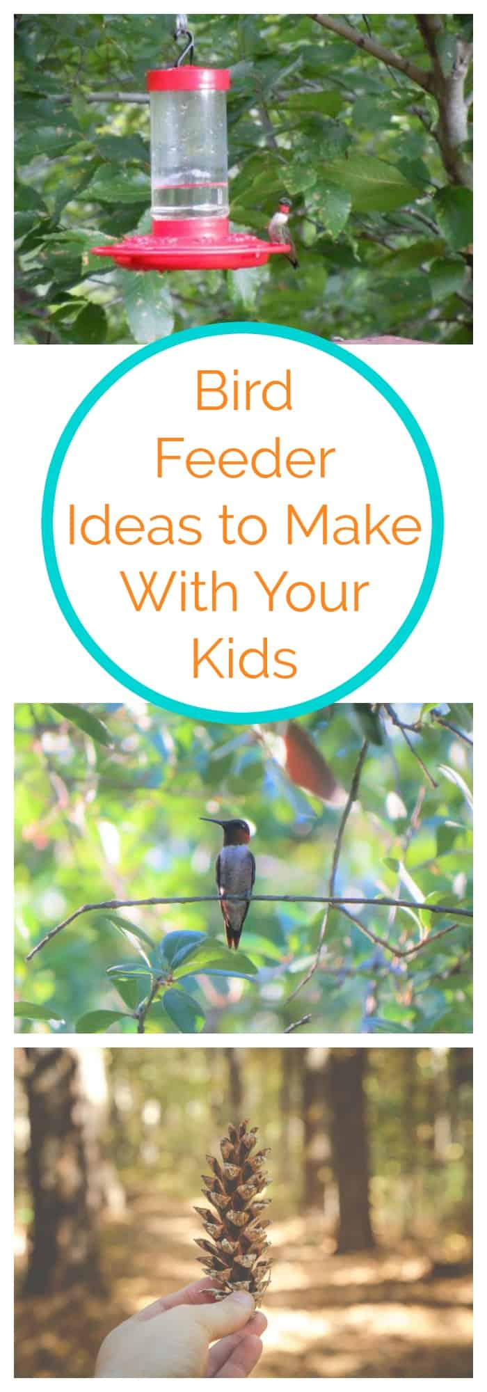 Bird Feeder Ideas to Make With Your Kids