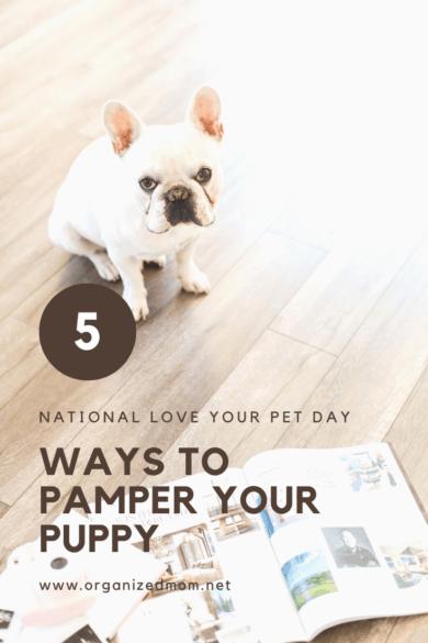 5 Ways to Pamper Your Puppy