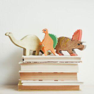 bookshelf Ways to Organize Children's Books