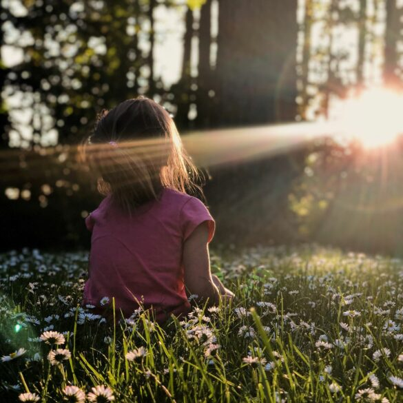 sunshine through the trees; outside activities for toddlers