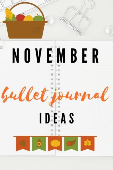 November bullet journal pin